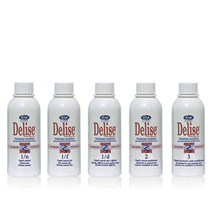 Delise-Modular